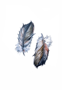 To fjær Trykk A3 Two Feathers - Cathrine Doreen